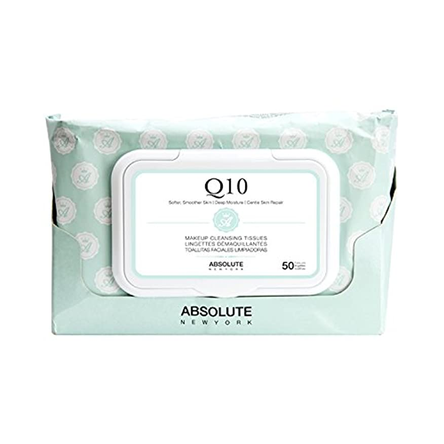 頭蓋骨取得するカテゴリー(6 Pack) ABSOLUTE Makeup Cleansing Tissue 50CT - Q10 (並行輸入品)