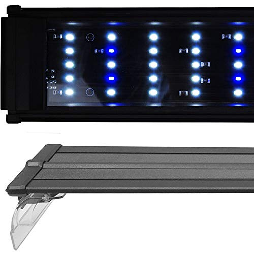 Beamswork DA 0.50W Series LED Pent Aquarium Light Marine FOWLR Cichlid (180cm - 72')