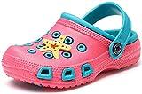 Gaatpot Zuecos para Unisex Niños Sandalia Zapatos Zapatillas Chanclas de Playa de Verano Rosa(Funny) 29 EU / 30CN