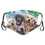 Animal Dog Set Pug Dust Filtro reutilizable lavable y reutilizable a prueba de viento boca caliente algodón cara