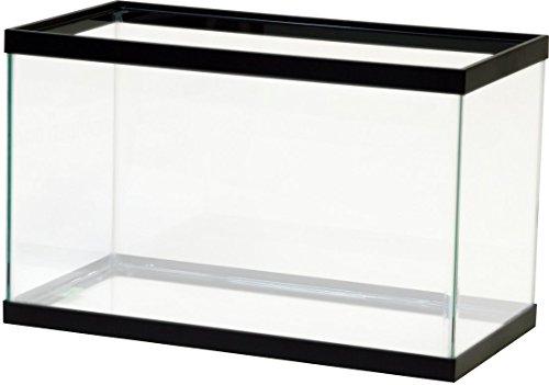 Fish; Aquatic Supplies Black Tank