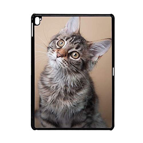 out of The Ordinary Print Pet Cat 2 Case Pc Womon On 12.9Inch iPad Pro Choose Design 111-5
