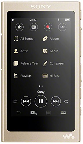 Sony NW-A45 3.1 Inch Touch Display High Resolution Audio Walkman 16 GB, 45 Hours Battery Life - Gold