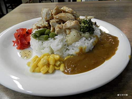 北九州の名店 アラジン 特製 野菜で作った カレー ルー 150g 肉なし 10個詰め合わせ (辛口10個)