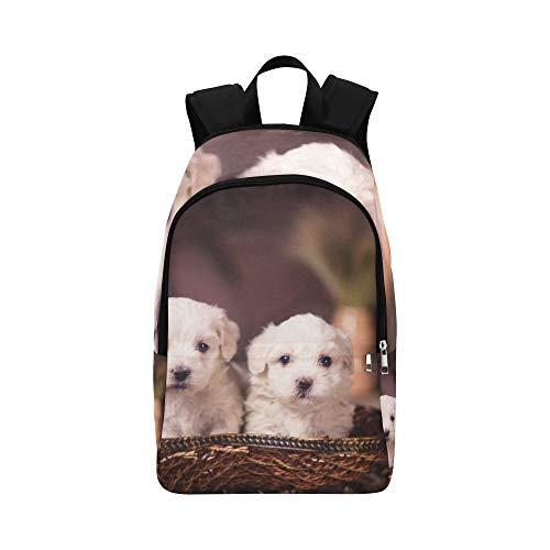 DKGFNK Sport Bag Kids Long Hair Maltese White Pet Durable Water Resistant Classic Picnic Backpack Best Packable Daypack School Girl Bag Cosmetic Organizer Travel Bag