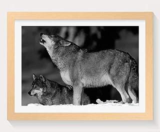 オオカミ -動物 -#3651 - 木製フォトフレーム 写真フレーム 木製 の枠 装飾画 壁掛け 壁飾り 壁ポスター 木製タグ おしゃれ ウォールアート アートパネル 壁の絵 インテリア絵画 額縁 部屋飾り 贈り物 プレゼント 黒と白 横 35×50cm