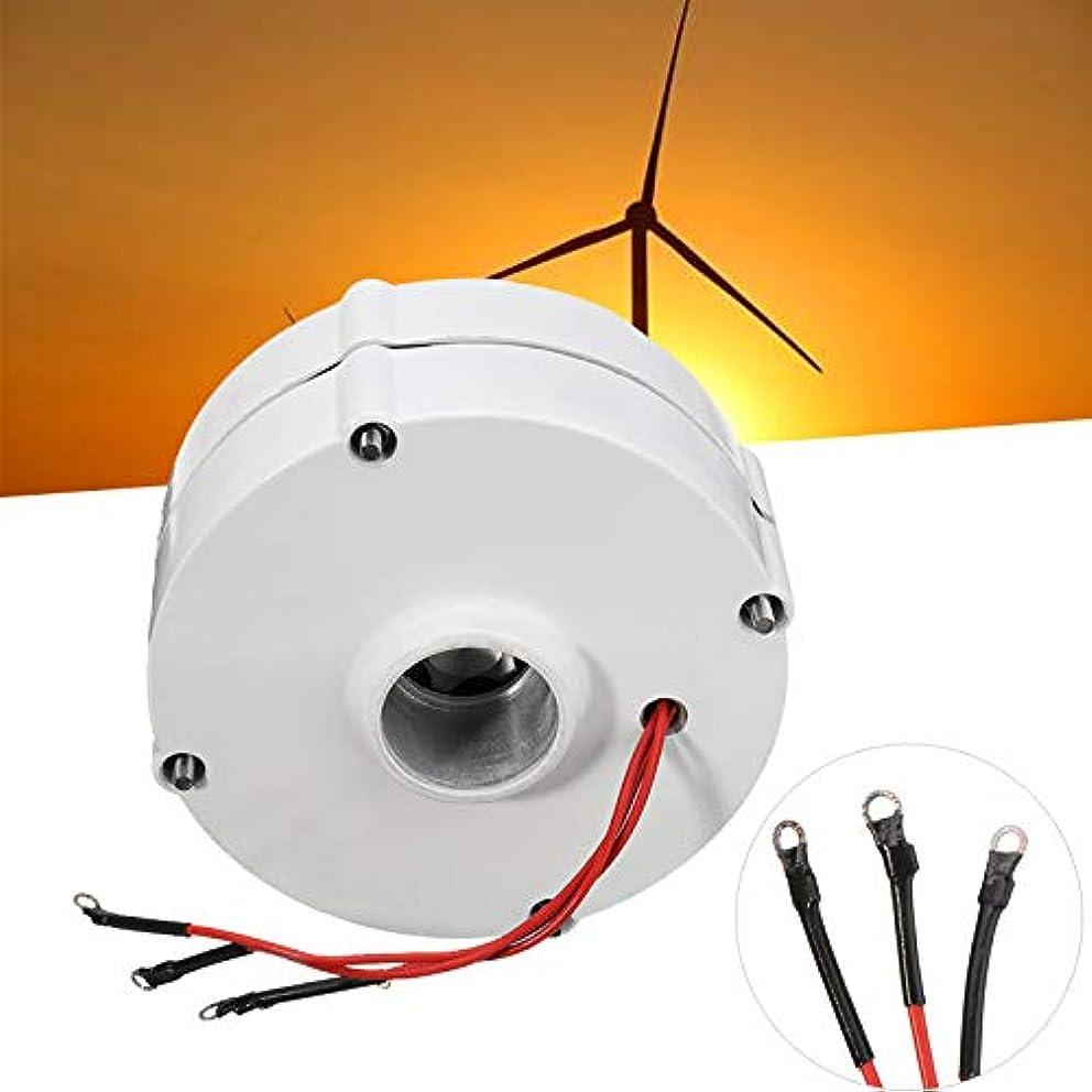 犯す大破鬼ごっこDIY風力タービンブレードコントローラ3相電流のための効率的な風力発電機モーター500W 12V 24V高効率 (24V)