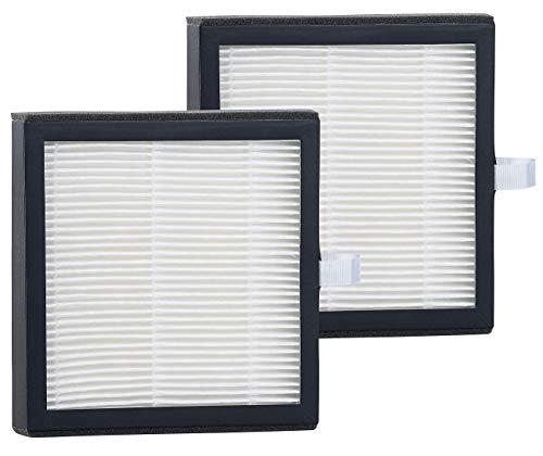 Sichler Haushaltsgeräte Zubehör zu Luftentfeuchter HEPA: 2er-Set Ersatz-Filter für 2in1-Luftreiniger & Entfeuchter LFT-250.app (Luftentfeuchter mit Luftreiniger)