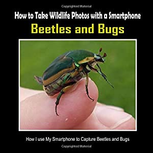 Beetles and Bugs: How I Use My Smartphone to Capture Beetles and Bugs (How to Take Wildlife Photos with a Smartphone)