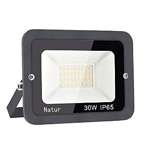 30W LED Foco Exterior Alto Brillo Proyector Led Impermeable IP65 Blanco Frío 6000K Floodlight Led Foco Exterior Iluminación para Patio, Camino, Jardín, Almacén [Clase de Eficiencia Energética A++]