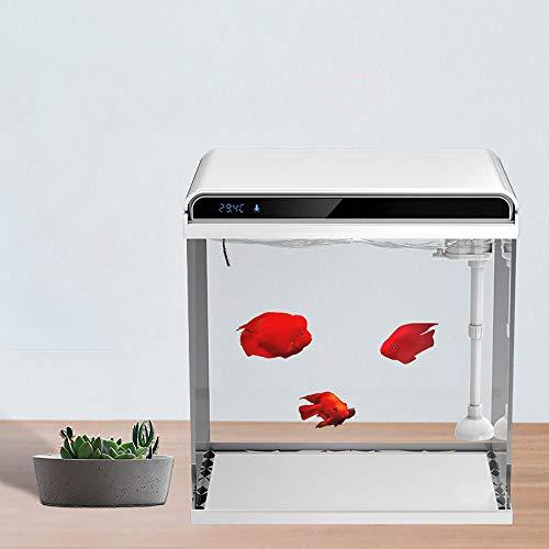 Aquarium Starter, Kleinultra Weiß Glas Aquarium, Tropen mit integrierten LED-Beleuchtung Aquarium Ökosystem Wasser Aquarium