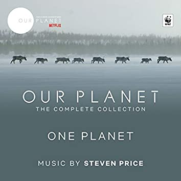 """One Planet (Episode 1 / Soundtrack From The Netflix Original Series """"Our Planet"""")"""