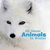 All about Animals in Winter (Little Pebble: Celebrate Winter) by Martha E H Rustad(2016-09-08)