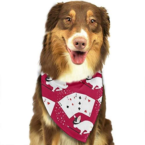 FunnyStar hond Bandana konijn in hoed doet kaart trucs sjaals accessoires decoratie voor huisdier katten en puppies