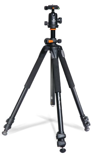 Vanguard Alta Pro 263AB 100 Aluminum Tripod with SBH-100 Ball Head