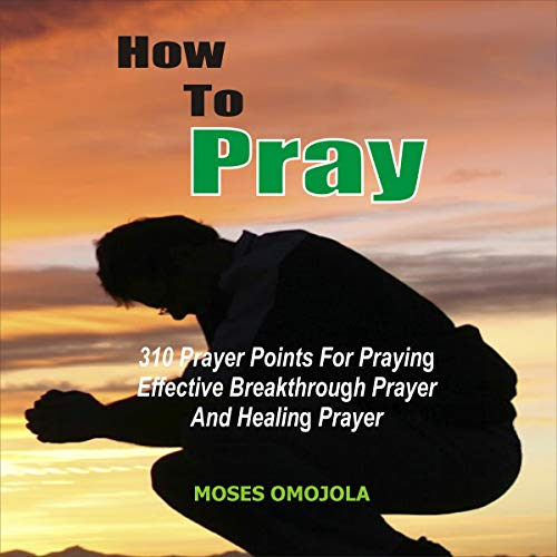 How to Pray  By  cover art