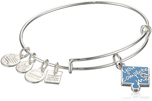 Alex and Ani Women's You Complete Me Bangle Bracelet, Shiny Silver