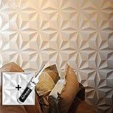Panel de pared 3D para decoración de pared + Pegamento Paneles 3D I 12 Paneles Decorativos 3m2 WallArt I Papel Pintado 3D Pared 3D (01 - Panel de pared 3D Cullinans)