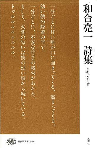 和合亮一詩集 (現代詩文庫)の詳細を見る