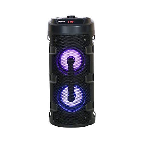 Detel High Power Audio System with Karaoke Mic,Bluetooth Connectivity, Light Shows (Tashan)