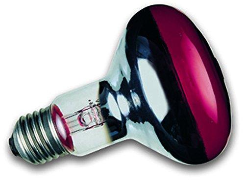 Sylvania Infrarotlampe 50 Watt IR R63 Reflektor E27 Reptistar