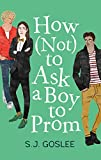 How Not to Ask a Boy to Prom - Goslee