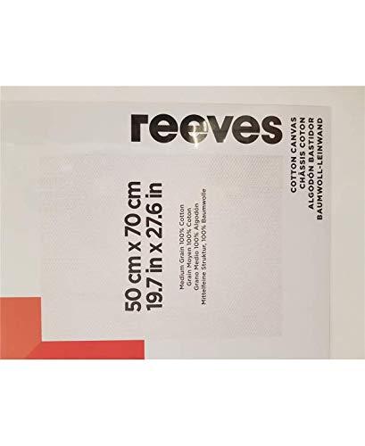 Reeves - Lienzo de algodón 50 x 70 cm - Blanco