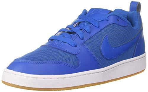Nike Men Court Borough Low Se Blnebl Basketball Shoes-7 UK (41 EU) (8 US) (916760-400)