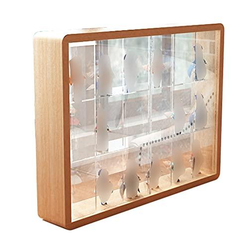 LM-Coat rack XINGLL Acrílico Vitrina Transparente, Cubo Prueba Polvo, Caja Protección para Figuras Coleccionables, Modelos Muñecas, Manualidades, Juguetes, Estante Almacenamiento Ladrillos