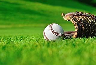Baseball Photo Background 10x6.5ft Daytime Green Lawn Baseball Glove Close-up Photography Backdrop Laeacco Baseball Game Kids Play Poster Wallpaper Photo Studio Props