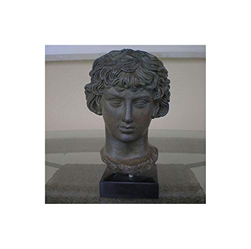Antínoo Busto con efecto bronce-antinoos- antigua rome-greece- hermoso tema