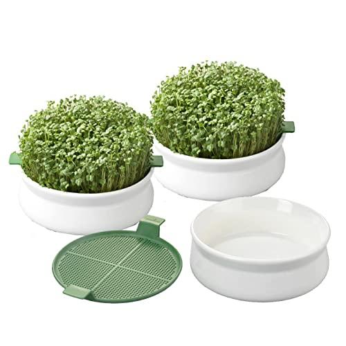 Germline - Germoir - Coupelle de germination - lot de 3