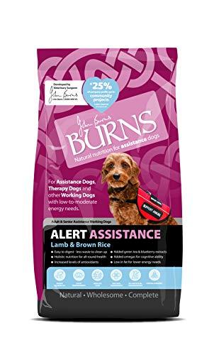 Burns Brennt Alarm Erwachsener Hund Futter Lamm und Braun Reis Alle Größen - 2 KG