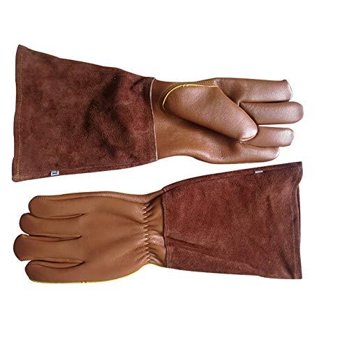 HANSHI Handschuhe Anti-Dorn für Männer und Frauen Gartenhandschuhe aus Ziegenleder Handschuhe für Kakteengewächse Brombeere und Rose...