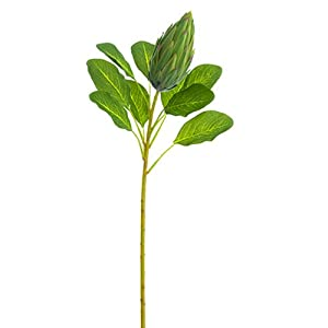 28.5″ Protea Bud Silk Flower Stem -Green (Pack of 12)