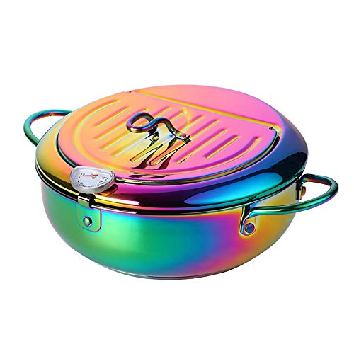 Stainless Steel Fryer Pan with Oil Draining Lid and Hollow Anti-Scalding Handle, Visual Oil Temperature Gauge, BUY&USE Multifunctional Rainbow Deep Fryer Pot, Combines Oil-saving, Splash-proof, Scald-proof, Oil-filtering Functions, 9.8 Inches/3.4L