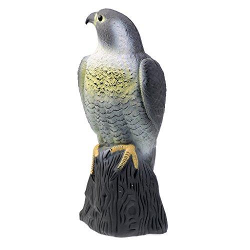 Homyl Réaliste Aigle Leurre de Chasse Epouvantail Figurine Decor Jardin Protection Contre Oiseaux Rongeurs Pigeon