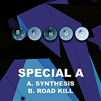 Synthesis / Road Kill