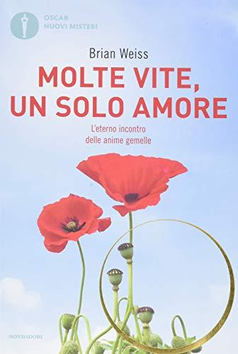 Molte vite, un solo amore 2013 (Formato tascabile)