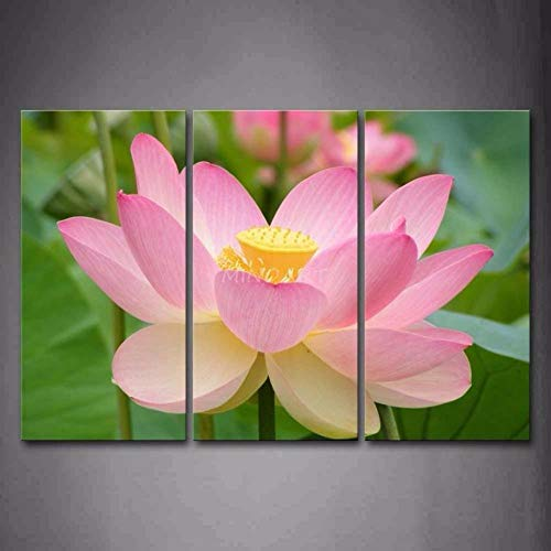 Impresión en Foto Lienzo Loto rosa Lienzo decorativo para pared Arte Moderno De La Decoración del Hogar Pintura Sin marco 3 piezas 50x70 cm