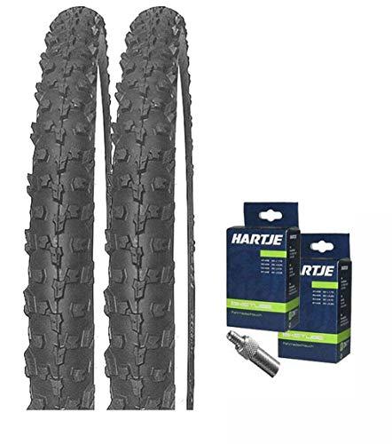 Mitas Set: 2 x Neptune Fahrrad BMX Reifen 20x1.90 (50-406) + SCHLÄUCHE Dunlopventil