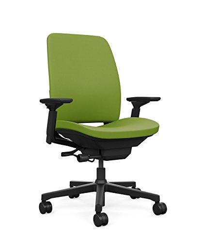 Steelcase Amia Ergonomic Office Chair with Adjustable Back Tension and Arms | Flexible Lumbar with Sliding Seat | Black Frame and Buzz2 Meadow Fabric