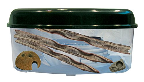 Namiba Terra 12081 Starter-Set, Habitat Box Regenwald, Maxi, flach, mit Kokoshöhle - CocoIglu und Mini-Wassernapf, Spiderbowl, Lianenstücken, 3 Stück, 40-55 cm, 59 x 46 x 29 cm