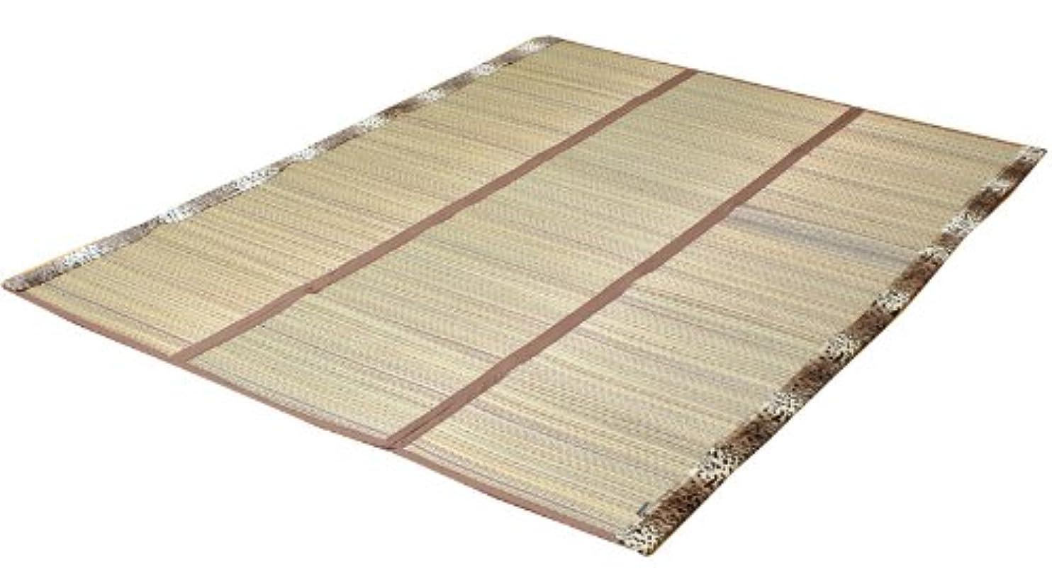 平行賭け救出イケヒコ い草ラグ カーペット 2畳 『DXパンサー』 ブラウン 約191×191cm (裏:不織布)