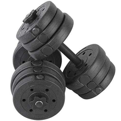 BESPORTBLE 1 Paio di Manubri da 20 kg Manubri Fissi Manubri Professionali Manubri da Fitness Manubri Gommati per Palestra Uomo Donna (Ferro Galvanico Nero)
