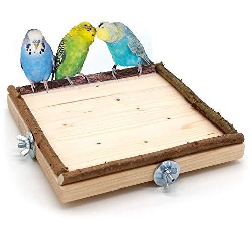 Vogelgaleria Planchette pour Cage à Oiseaux Grand modèle