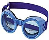 Doggles ILS Extra Small Shiny Blue Frame with Blue Lens Dog Goggles