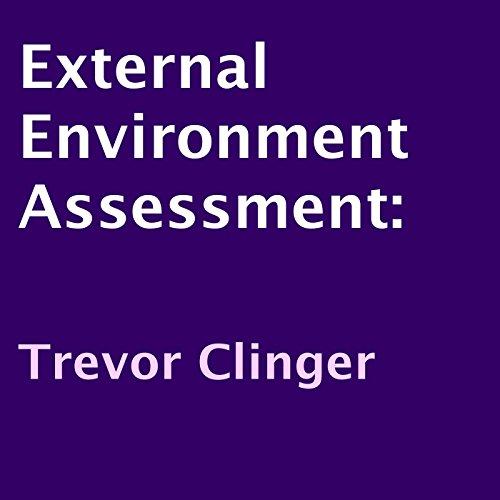External Environment Assessment audiobook cover art
