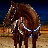 ZANGAO Nueva LED Dual Caballo cabestros Brida arnés Coraza Collar Correa de Nylon Noche Visible Horse Riding Equipment for el Caballo (Color : Blue)