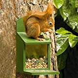 CJ Wildlife Wooden Squirrel feeder